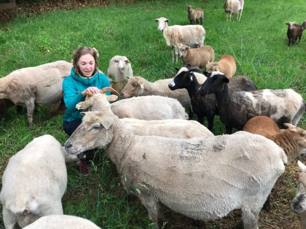 Herd Supply Co_Leah and the Sheep